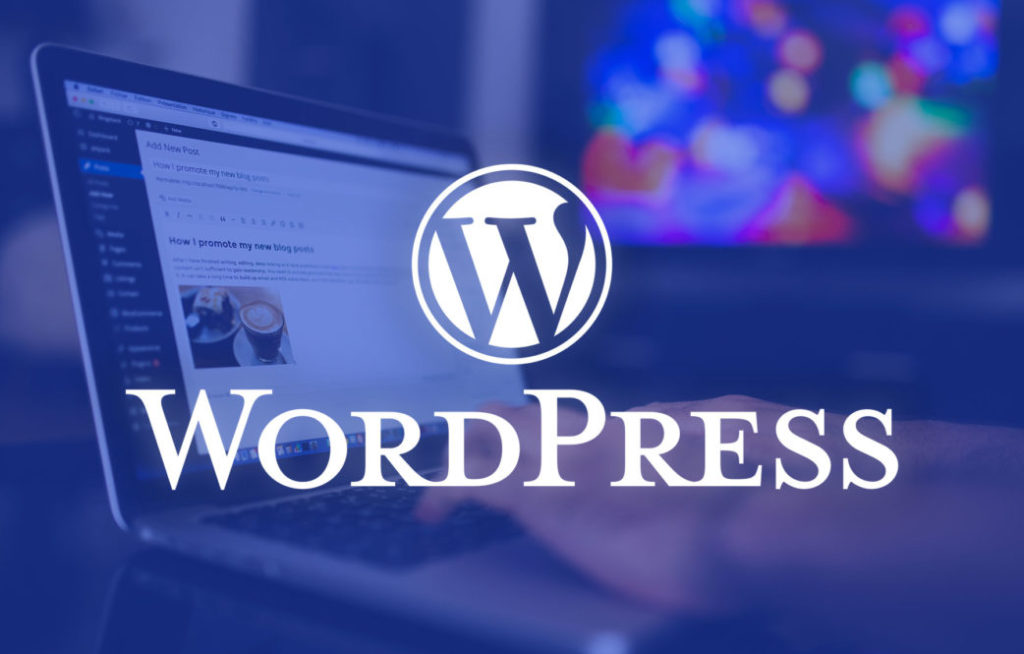 WordPress Is the Best CMS for SEO: 5 Rationales